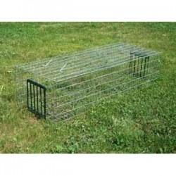 Cage à pigeon à cliquettes